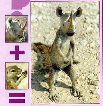 """Obrázek """"http://xantina.hyperlink.cz/obrazky/9990.jpg"""" nelze zobrazit, protože obsahuje chyby."""